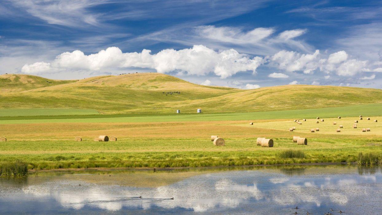 landscapes grass wallpaper