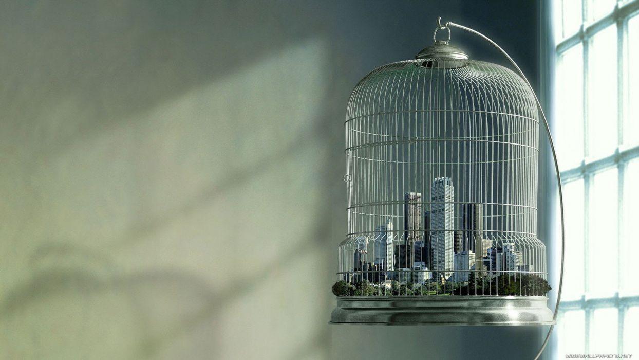 birdcage cage cities wallpaper