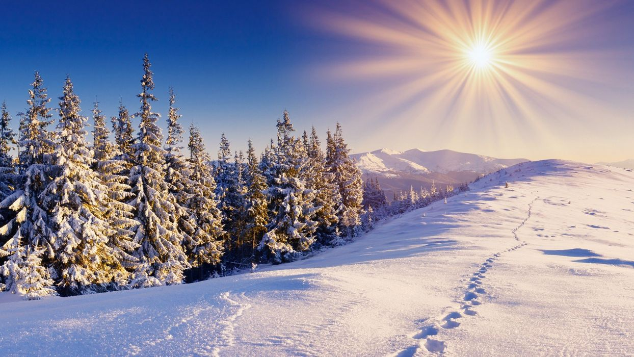 clouds landscapes snow trees sunlight sun flare wallpaper