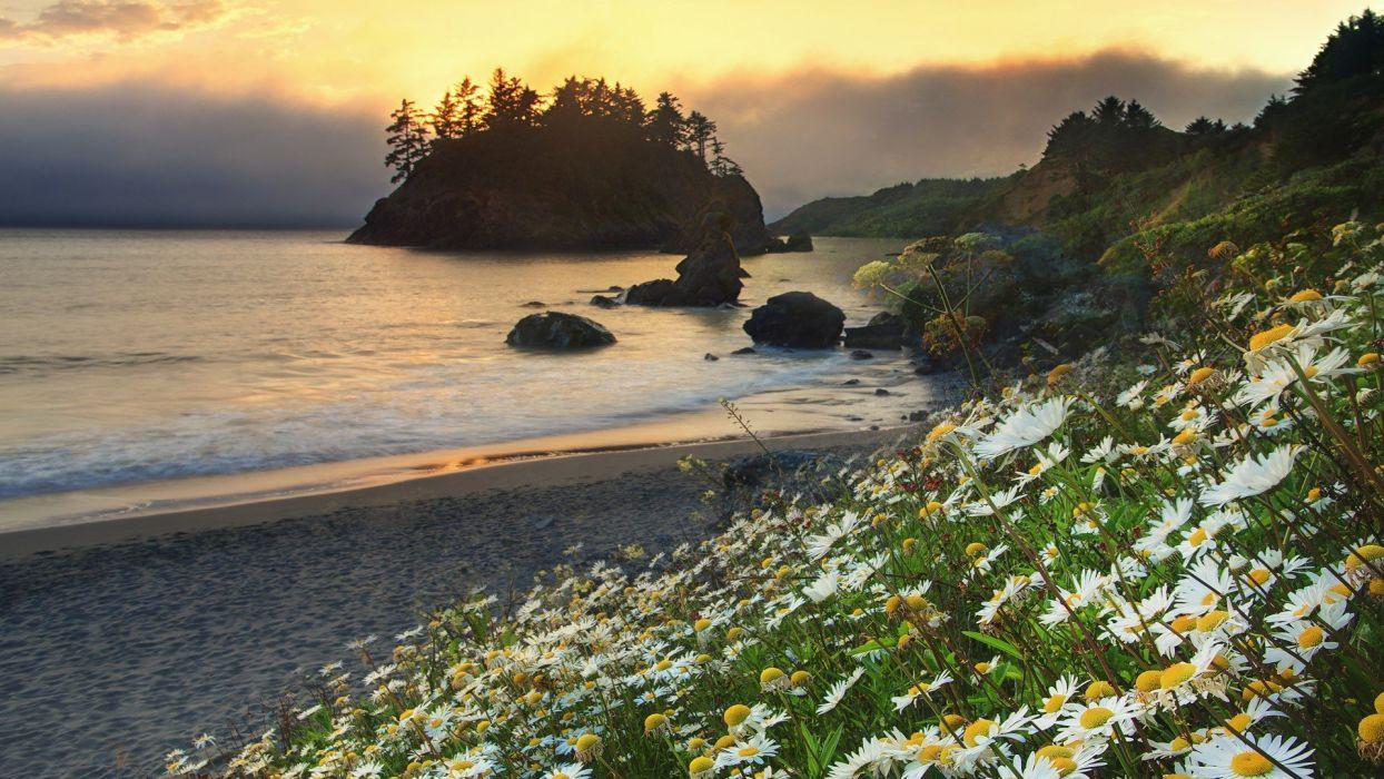 landscapes California Trinidad beaches wallpaper