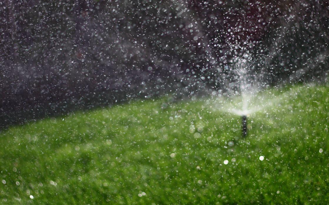 water grass sprinkler wallpaper