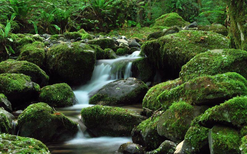 nature rivers wallpaper