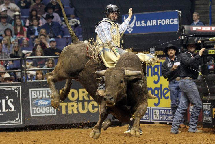 bull riding bullrider rodeo western cowboy extreme cow (4) wallpaper