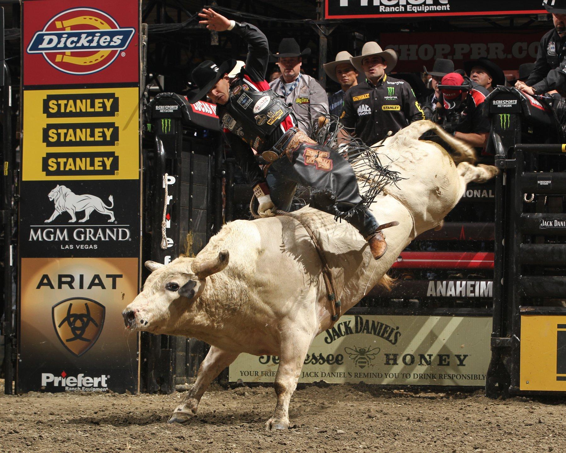 Bull riding bullrider rodeo western cowboy extreme cow 11 jpg wallpaper 1800x1440 298675 - Bull riding wallpapers ...