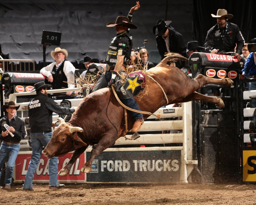 bull riding bullrider rodeo western cowboy extreme cow (14)_JPG wallpaper