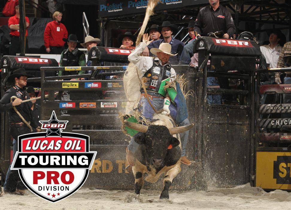 bull riding bullrider rodeo western cowboy extreme cow (15) wallpaper