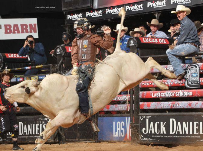 bull riding bullrider rodeo western cowboy extreme cow (28) wallpaper