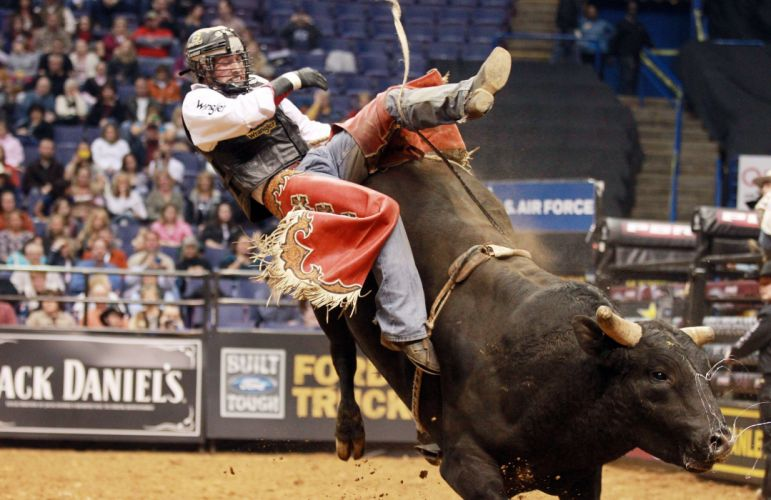bull riding bullrider rodeo western cowboy extreme cow (30) wallpaper