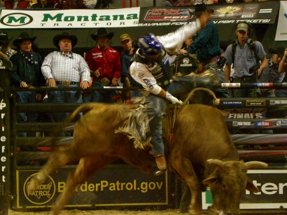 bull riding bullrider rodeo western cowboy extreme cow (32)_JPG wallpaper
