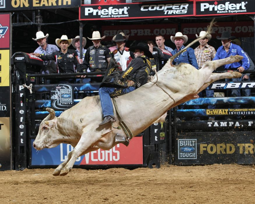 bull riding bullrider rodeo western cowboy extreme cow (31)_JPG wallpaper