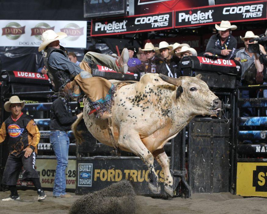 bull riding bullrider rodeo western cowboy extreme cow (33)_JPG wallpaper