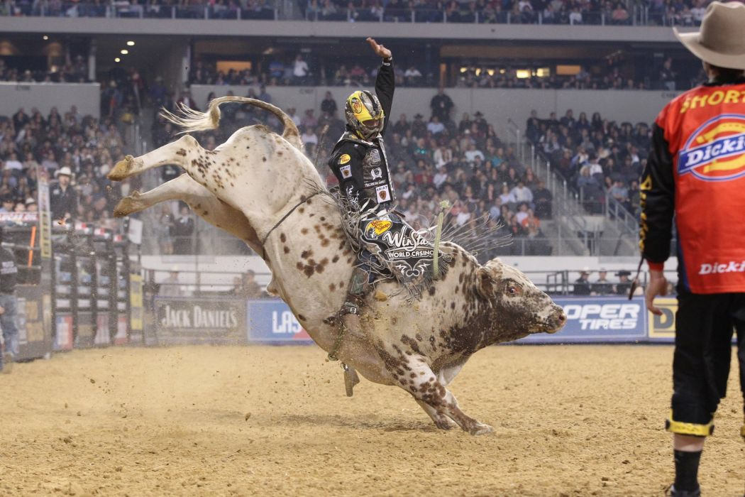 bull riding bullrider rodeo western cowboy extreme cow (35) wallpaper