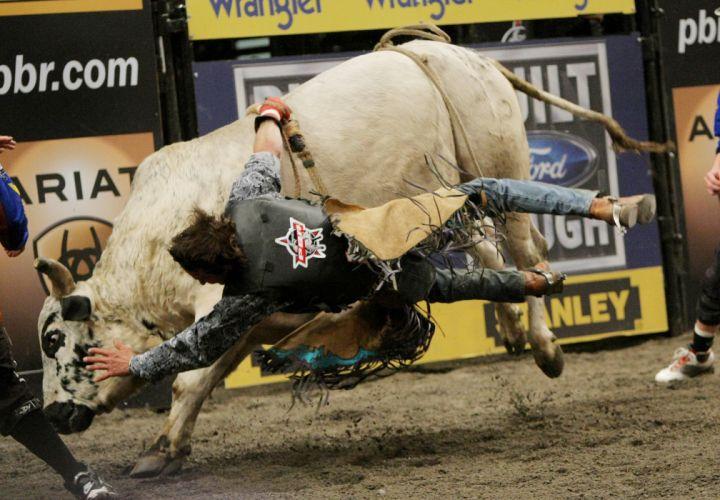 bull riding bullrider rodeo western cowboy extreme cow (38) wallpaper