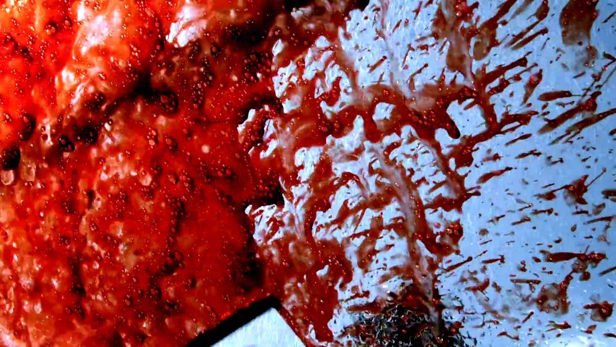 SHARKNADO horror sci-fi television movie film shark blood wallpaper