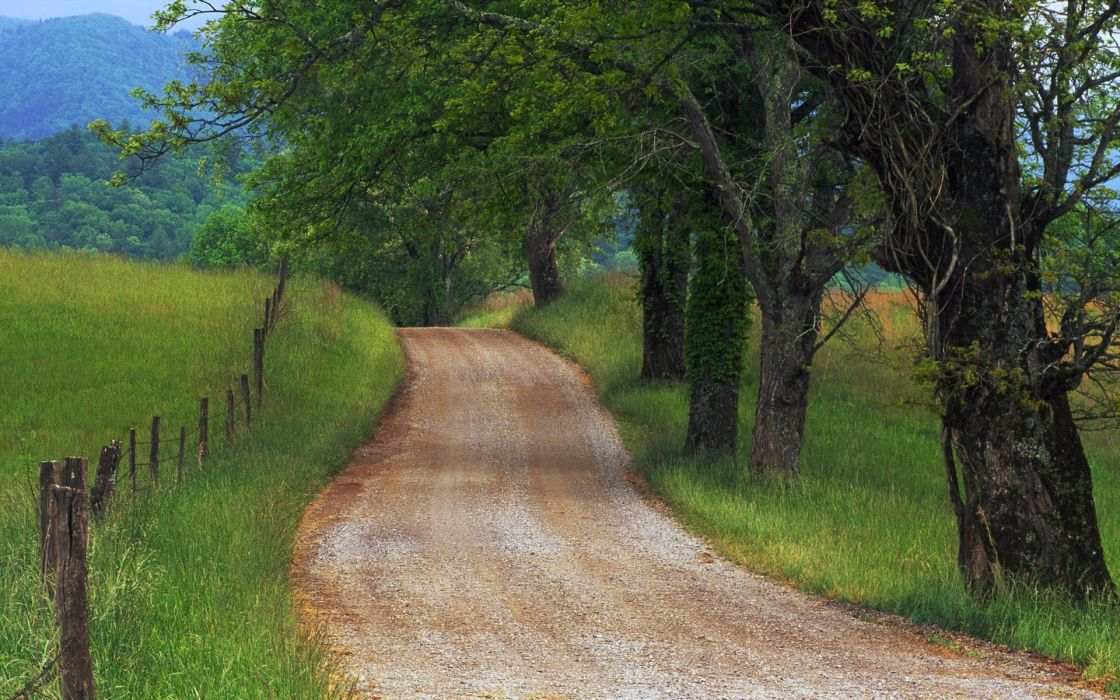 nature countryside Country Roads wallpaper