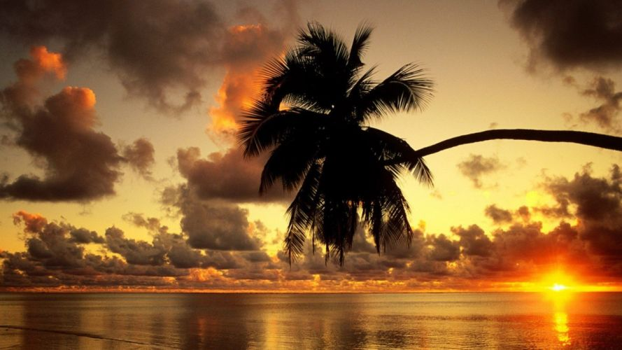 sunset clouds silhouettes palm trees sea wallpaper