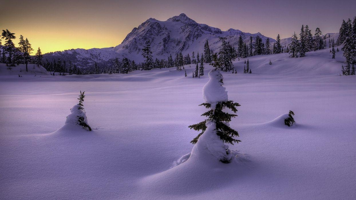 winter snow snow landscapes wallpaper