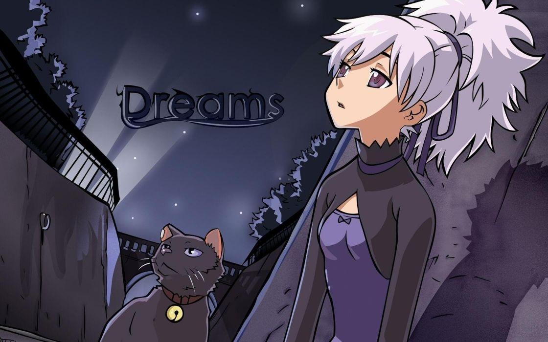 cats animals Darker Than Black Yin dreams purple dress anime girls wallpaper
