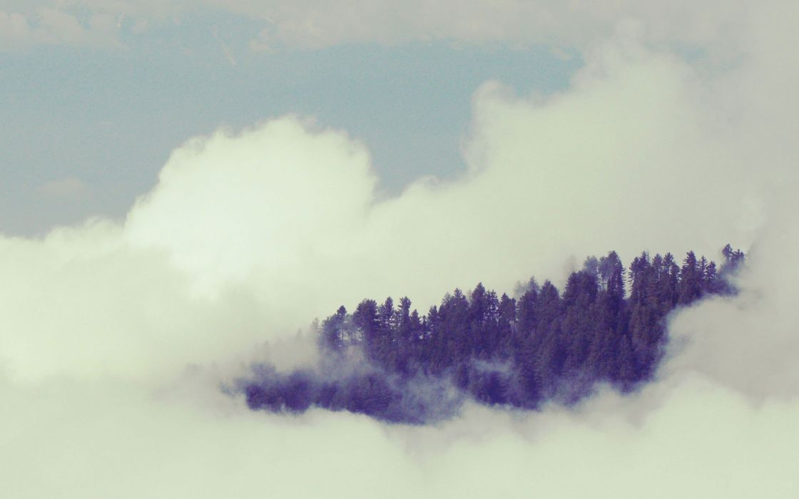 clouds forests wallpaper
