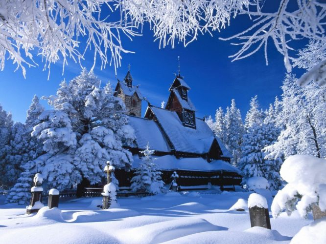 landscapes winter trees HDR photography wallpaper