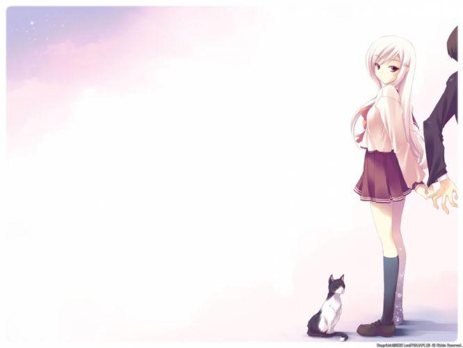 cats school uniforms white hair To Heart 2 sailor uniforms knee socks Lucy Maria Misora wallpaper