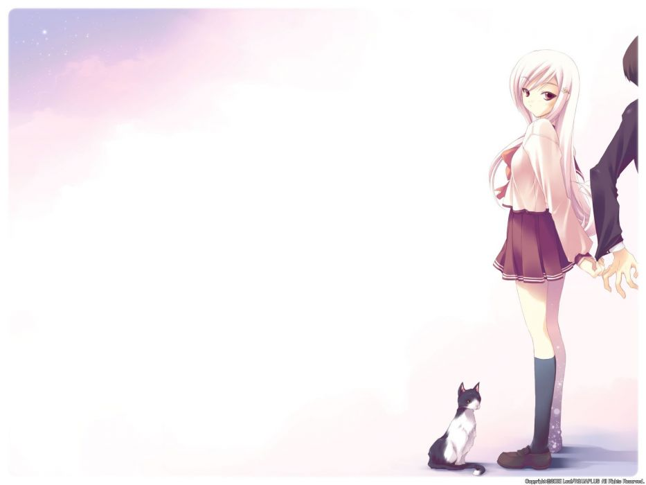 cats school uniforms white hair To Heart 2 sailor uniforms knee socks Lucy Maria Misora wallpaper