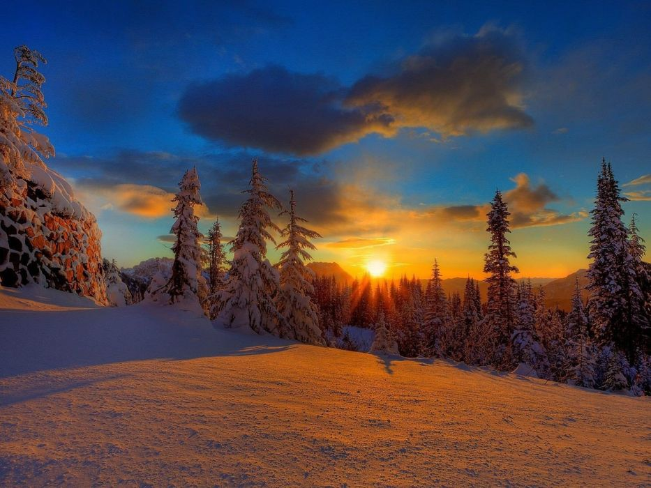 sunset landscapes nature winter snow trees skylines forests wallpaper