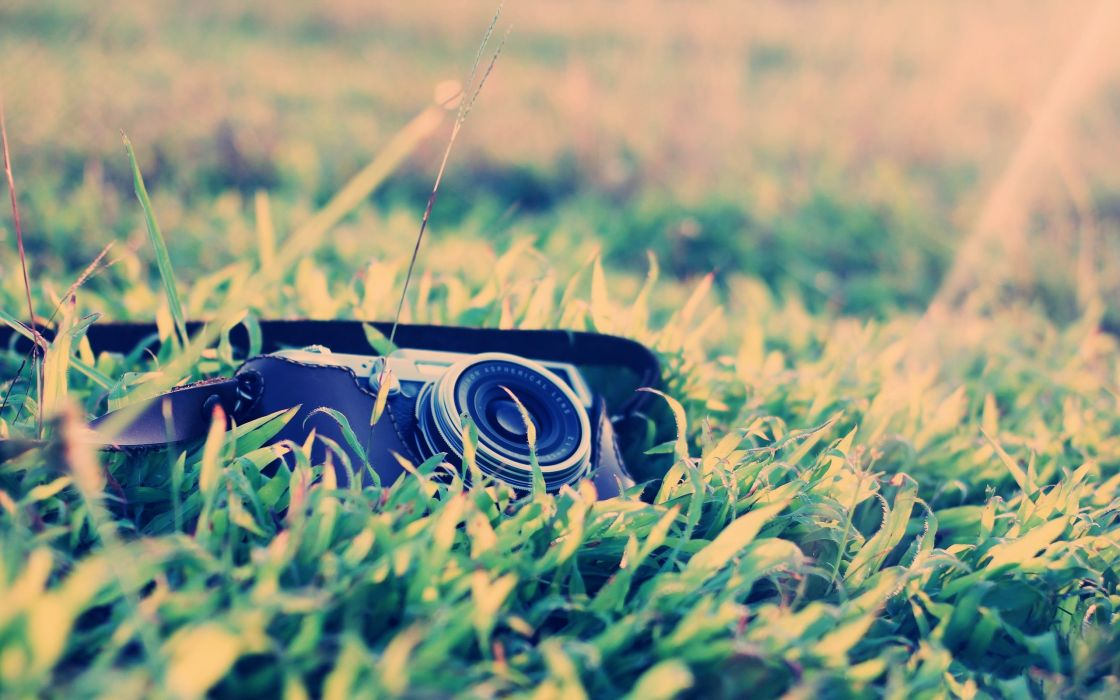grass cameras macro wallpaper