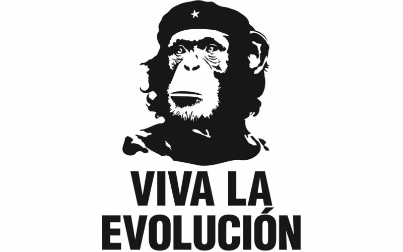 funny revolution evolution Che Guevara wallpaper