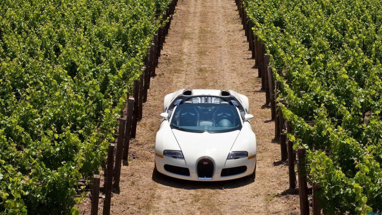 cars Bugatti Veyron Bugatti Italy wallpaper