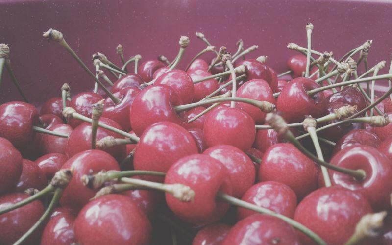 nature pink fruits purple plants cherries macro wallpaper