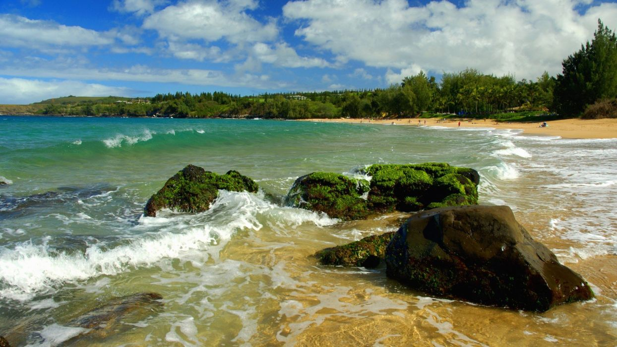 green rocks Hawaii beaches wallpaper