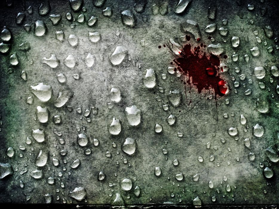 blood water drops macro wallpaper