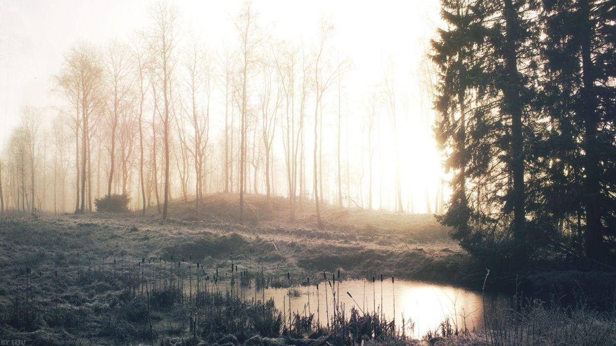 landscapes nature frost wallpaper