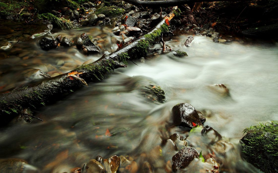 autumn streams wallpaper