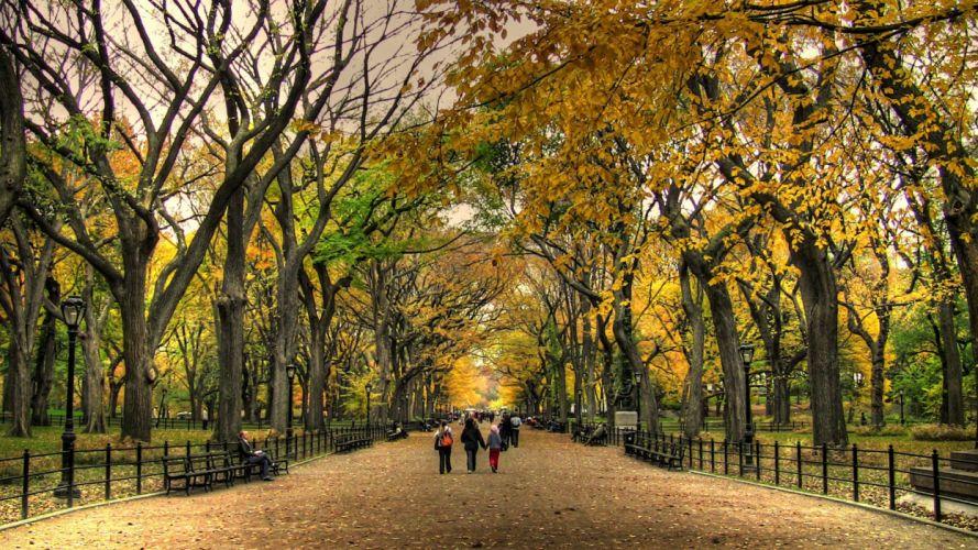 Central Park wallpaper