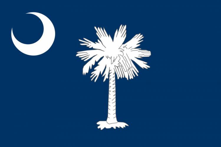2000px-Flag of South Carolina_svg wallpaper