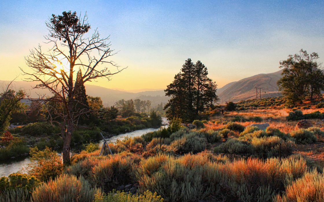 landscapes nature Sun wallpaper
