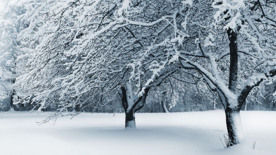 snow fallen Ohio Cleveland wallpaper