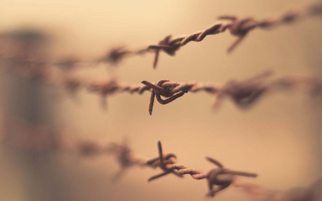 fences depth of field barbed wire wallpaper