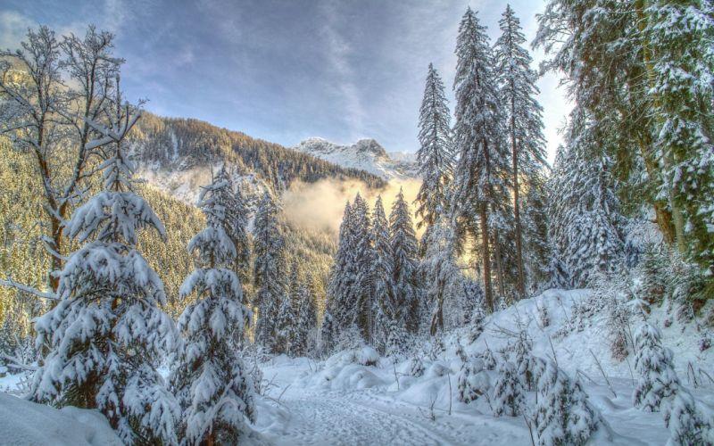 landscapes nature winter wallpaper