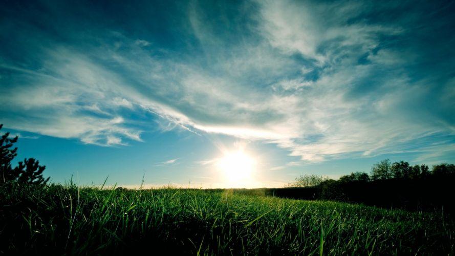 landscapes nature grass sunlight wallpaper