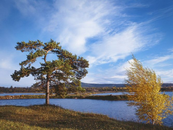 nature autumn Siberia wallpaper