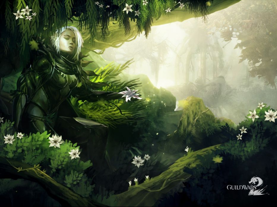 video games Guild Wars artwork Guild Wars 2 wallpaper