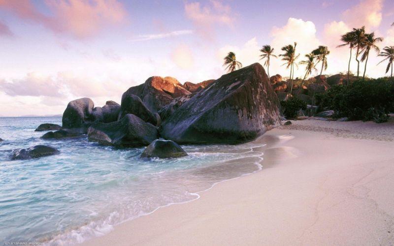 landscapes rocks palm trees sea beaches wallpaper