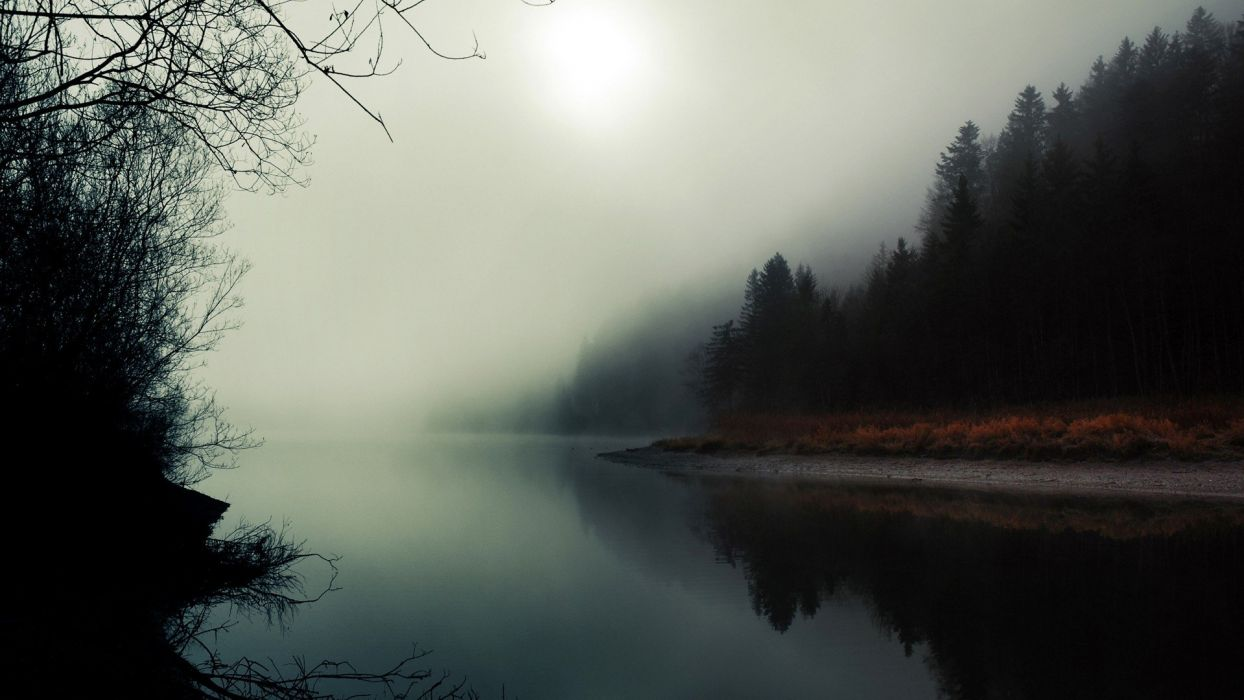 water landscapes trees fog Twin Peaks wallpaper