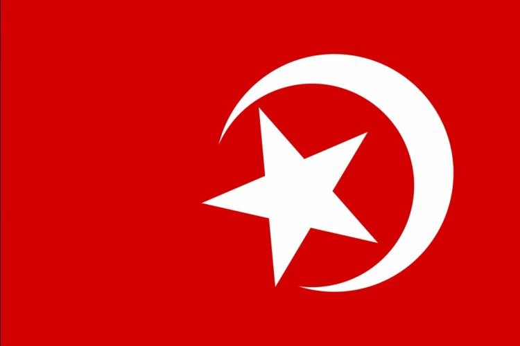 2000px-Nation of Islam flag_svg wallpaper