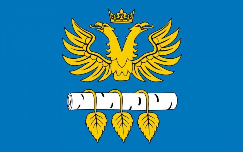2000px-POL powiat brzozowski flag_svg wallpaper