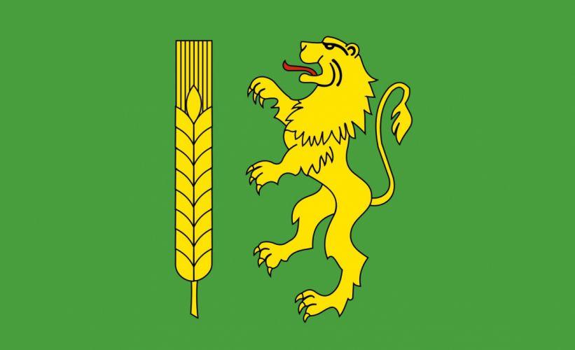 2000px-POL powiat kutnowski flag_svg wallpaper
