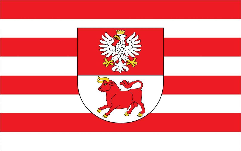 2000px-POL powiat bielski (podlaski) flag_svg wallpaper